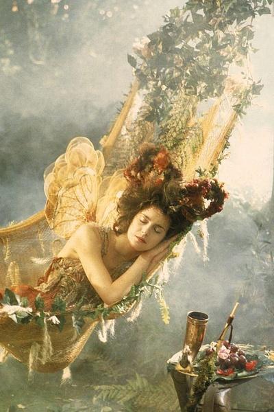 刘大心_仲夏夜之梦_电影剧照_图集_电影网_1905.com