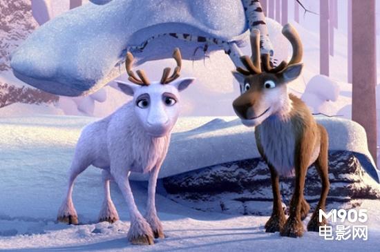 极地动物招贴海报