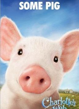 电脑壁纸可爱萌猪
