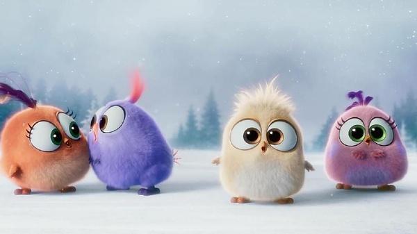 圖庫 電影劇照 > 憤怒的小鳥