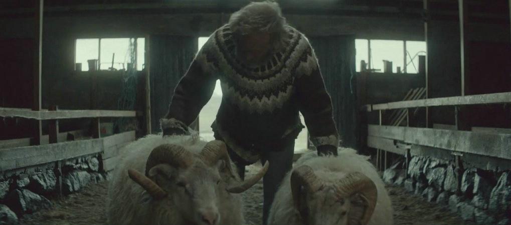 疯狂动物城公羊