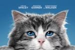 《九条命》正式海报出炉 萌猫萌字标出自己萌出血