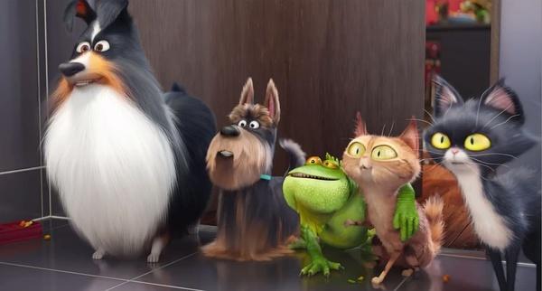 宠物版《疯狂动物城》里这些细节你都get到了吗?