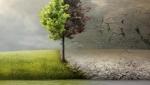 《洪水泛滥之前》曝新预告 小李再度涉及环保题材