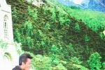 《全世界》两日1.38亿 广州首映杨洋