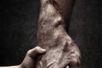 《金刚狼3》定名曝前瞻海报 导演詹姆斯晒剧本