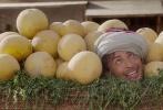 """爆笑治愈寒冬!法国年度票房冠军,全球最热门童话IP《阿拉丁与神灯》将于11月18日全国上映。影片由中国电影股份有点公司引进,华夏电影发行有限公司发行,著名导演亚瑟·邦扎康执导,凯文·亚当斯、让·保罗·卢弗、凡妮莎·吉德、奥黛丽·拉米等主演。这部逗逼系爆笑奇幻冒险喜剧,近日曝光一组""""辣眼睛""""剧照,继承早前""""爆笑""""治愈的风格,此次无厘头""""虐狗""""画像与灵魂电波交流的画面,不少网友点赞道,""""在光棍节来临之际触不及防塞一嘴口粮。"""""""