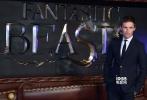 """对于大多数""""哈迷""""来说,重温情怀的时刻很快就要到了。11月15日,《神奇动物在哪里》在英国伦敦举行首映式,""""小雀斑""""埃迪·雷德梅恩、著名作家J·K·罗琳、凯瑟琳·沃特斯顿等全主创到场,想必红毯上人声鼎沸。"""