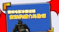 0329快讯:周游电影 《金刚》的威力与象征解读