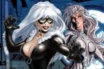 《蜘蛛侠》衍生片《银貂与黑猫》已经敲定导演