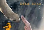 """动物题材电影《重返·狼群》今日正式上映,片方发布了一支""""佟丽娅推荐版""""预告片。知名女演员佟丽娅为《重返·狼群》倾情献声,直言小狼格林颠覆了她对狼的一贯印象,""""狼妈""""李微漪救狼、训狼及帮助小狼重回草原的举动则不仅让她感受到责任感和信念的力量,更看到了女性非凡的毅力与果敢。"""