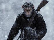 《猩球崛起3》预告再曝新角色 凯撒打响反击战