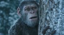 《猩球崛起3:终极之战》父亲节版预告片
