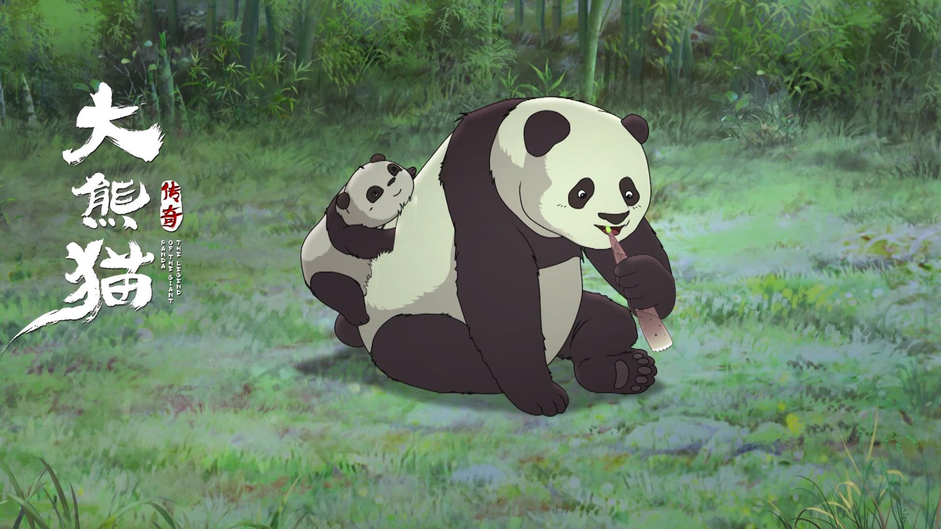 壁纸 大熊猫 动物 1920_1080