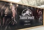 环球的《侏罗纪世界:失落王国》(以下简称《侏罗纪世界2》)在伦敦授权展曝光一款最新banner,如今2017年已经进入深秋,粉丝们与电影人都在展望将在2018年上映的一系列大片,《侏罗纪世界2》无疑是其中十分抢眼的一个。