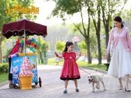 电影《小狗奶瓶》定档2月2日 萌犬守约漫漫回家路