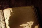 《神探蒲松龄之兰若仙踪》已于1月15日正式杀青,当晚阮经天个人微博发布杀青合影,瞬间引爆网络。1月17日,片方曝光概念海报,正式宣布成龙、阮经天、钟楚曦、林柏宏、林鹏、乔杉、潘长江、苑琼丹、Luu Brothers、姜嫄等加盟。
