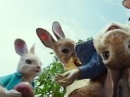 """《比得兔》上演""""农场保卫战"""" 人兔大战再升级"""