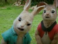 《比得兔》正片片段 伙伴被绑架比得兔解救出奇招