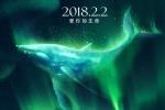 吴有音揭秘电影《南极之恋》南极冒险拍摄幕后