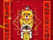 《爱猫之城》曝猫狗双全海报 高分纪录片有望引进