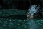 奥斯卡最佳影片,年度最受期待的奇幻爱情神作《水形物语》将于3月16日全国浪漫上映。该影片由福斯探照灯影业出品,吉尔莫·德尔·托罗执导,莎莉·霍金斯、道格·琼斯、理查·詹金斯、奥克塔维亚·斯宾瑟、迈克尔·珊农、迈克尔·斯图巴等实力演员联袂主演。《水形物语》讲述了哑女爱丽莎与人鱼从相识相知到相爱,从生活点滴的美妙到生死轮回的考验,其间发生的一段奇幻浪漫故事。导演陀螺用他的赤诚之心讲述他心中对爱的理解,而影迷们只需步入影院就一定会陷入这片温柔之中。