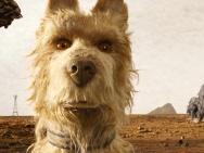 《犬之岛》背后灵感来源曝光,居然这么震撼人心