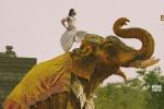 印度票房冠军《巴霍巴利王2:终结》定档5月4日