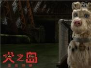 流浪狗遭遇现实版《犬之岛》 韦斯安德森新片获赞