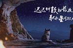 《阿尔法:狼伴归途》点映 获赞