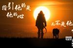 《阿尔法》曝正片片段 狼王现身竟激发养狗欲望?