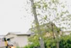 """9月13日,王俊凯首部个人图书作品《十九岁的时差》正式发售,清新的""""漫撕男""""画风,使人眼前一亮,如沐春风。"""