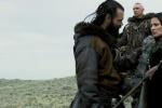 《阿尔法:狼伴归途》亲情动人 引领家庭观影风潮