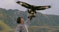 《追鹰日记》发布预告定档