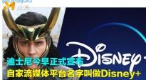 迪士尼流媒体平台取名Disney+ 抖森将携洛基独立剧集回归