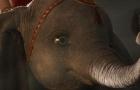 《小飞象》发布正式中文预告片