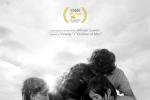 纽约影评人协会开奖 《罗马》获最佳影片等三奖