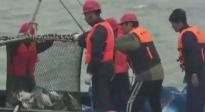 大丰收!郭晓东首次出海捕鱼 一次捕到三百斤鱼