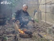 《四个春天》今公映 巩俐赵薇陈坤为何被它感动?