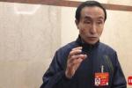 政协委员巩汉林:传播中国文化要想办法吸引年轻人