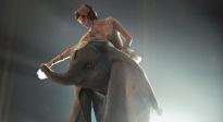 獨家解析《小飛象》:當迪士尼童話遇到蒂姆·波頓