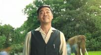 《我的宠物是大象》发布《康定情歌》MV