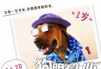 """近日,新快3娱乐平台《狗眼看人心》曝光一组狗与人年龄对比版手绘海报,直观展现出狗狗和人在童年、少年、中年、老年四个不同时期年龄的对照换算,不仅成功打破人狗年龄的次元壁,也将狗狗对主人的深情展露无遗。""""狗狗的一生不长,珍惜相伴的时光。"""""""