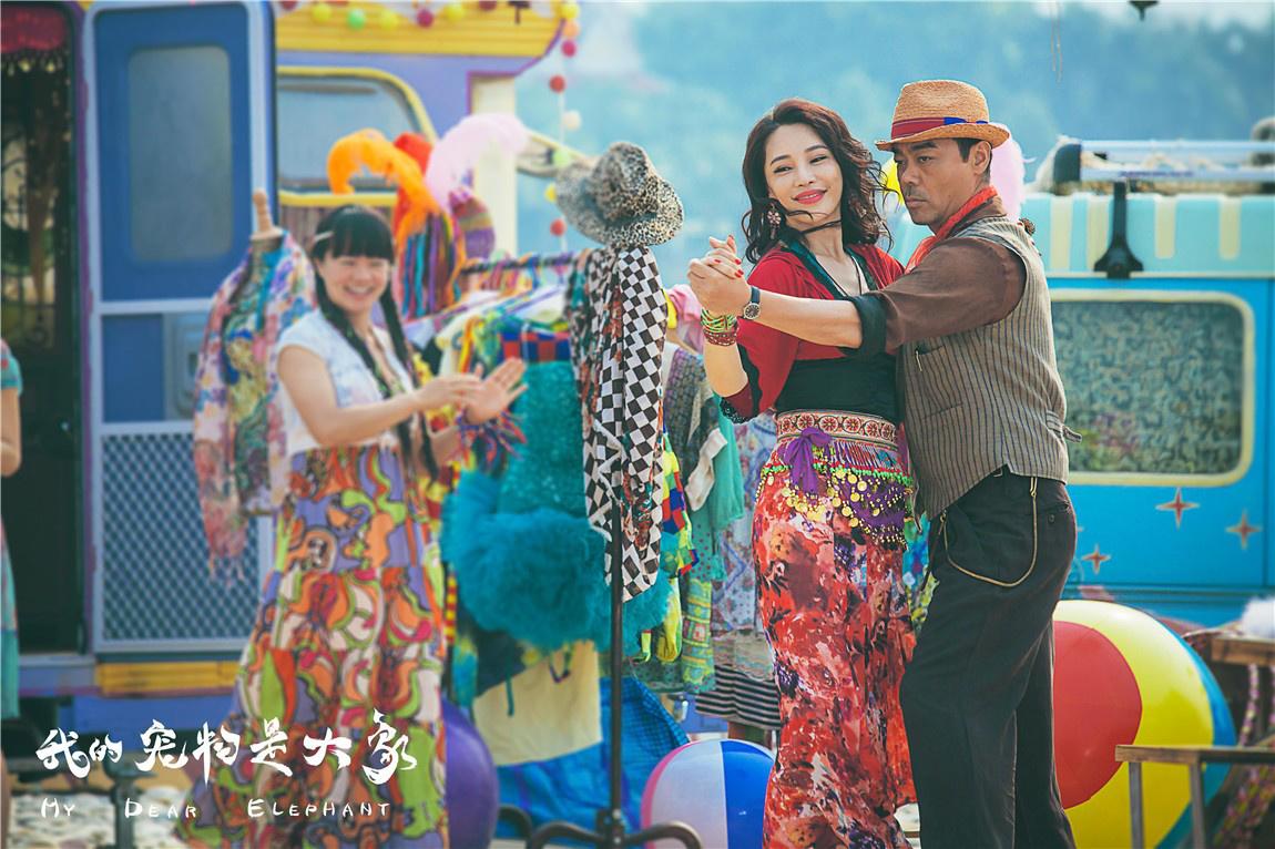 《我的宠物是大象》4.12孔维搭档刘青云饲养大象