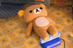 《輕松小熊與小薰》曝特別視頻 輕松熊竟是人偶?