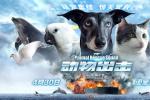冯小宁执导儿童动物电影 《动物出击》曝终极预告