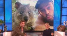 """家里有个动物园的""""锤哥""""竟然被这只动物吓破胆!"""