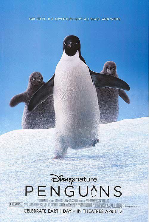 娜塔莉・波特曼将任迪士尼新片旁白 讲述海豚故事