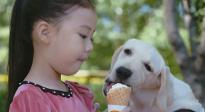 忠犬八公式萌宠 CCTV6电影频道4月24日15:54播出《小狗奶瓶》