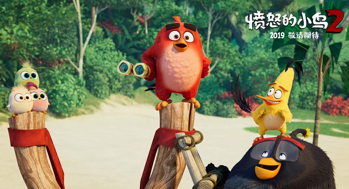 韩组合一个胖红头_《愤恨的小鸟2》捣蛋猪竟向胖红求和?